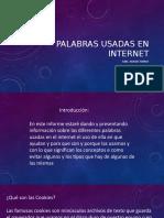 Palabras usadas en el internet.pptx