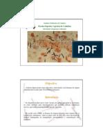 Clostridium Perfringens - Apresentação