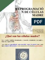 Reprogramacion de Celulas Madre