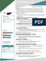 HV Call center Ciro Avila Castellanos 2020.pdf