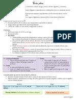 Visceras  pelvicas.pdf