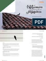 Texto 2 Estetizacion y estetica de la naturaleza -Merchán
