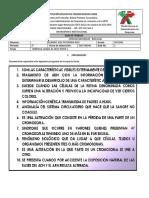 GUIA N° 1 HERENCIA LIGADA AL SEXO NOVENO SEGUNDO PERIODO 2020 (1)