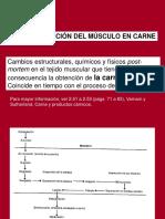 transformacion.pdf