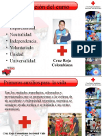 presentaciones primeros auxilios