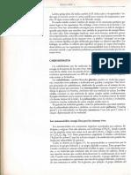 Bibliografía_HdeC