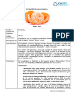 ficha-mandarina