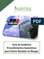 GuÝa de AuditorÝa para Procedimientos Sustantivos para Pymes Basados en Riesgos.pdf