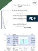 BFIQ_U1_A2_ARCC.pdf