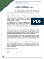 TDR-Reformulacion-coberturas livianas