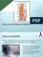 360593240-Boli-ale-sistemului-nervos-ppt.ppt