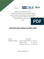 Ensayo Importancia del AEC.docx