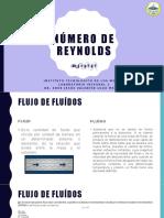 1.2_Numero_de_reynolds.pptx.pptx