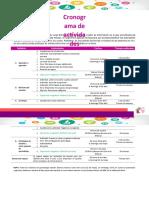 Cronograma_de_actividades_MOOC