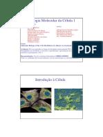 celulas 2.pdf