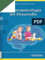 Neuropsicología del Desarrollo.pdf