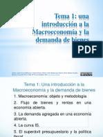 Presentación Tema 1 OCW.pdf
