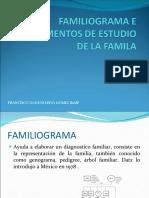 instrumentosestfam-110515142631-phpapp02.pdf