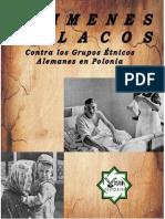 ATROCIDADES POLACAS CONTRA LAS MINORÍAS ÉTNICAS EN POLONIA - VERDADERA CAUSA DE LA SGM