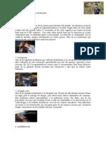 10 problemas sociales en Guatemala.docx