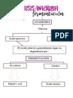 Consulta previa.docx.pdf