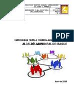 CULTURA ORGANIZACIONAL IBAGUE