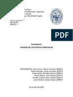 Cuestionario Producción Animal Grupo 1.pdf