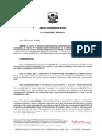 RM_N_142-2020-PRODUCE.pdf