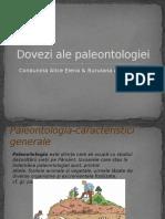 378115295 Dovezi Ale Paleontologiei Pptx