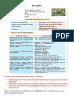 Lectia 3.Drepturile si  responsabilitatile copiilor cl.a V.pdf