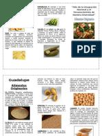 tritpico de alimentos organicos