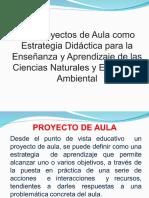PROYECTO DE AULA (1)