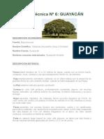 Ficha Técnica de arboles