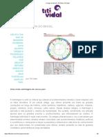 O mapa do Brasil ⋆ estudo do mapa astral do Brasil