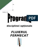 Optional Fluier