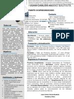 73-curriculum-vitae-empresarial