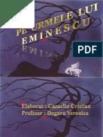 Proiect Eminescu Mihai.ppt