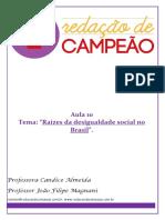 10. Raízes da desigualdade social no Brasil