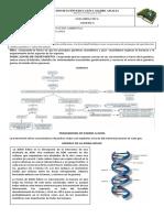 guia de GENETICA  IEMA GRADO 9° 1.pdf