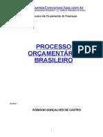 ou-Resumo_Processo_Orcamen_Robson.doc