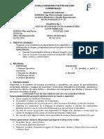 GUÍA DE PRÁCTICAS DE INDUCCIÓN DE SEGURIDAD INFORME