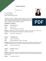 CV Marilyn Cabanillas