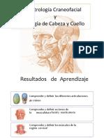 Clase 12 y 13 Artrologia Craneofacial, Miologia cara y cuello