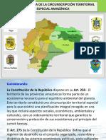 Resumen Ley Especial Amazónica presentada por el CONGA al CNE.pdf