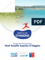 Bases SSAF Desafío Impulsa O'Higgins (1).pdf