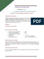 Tarea_Formato_2020