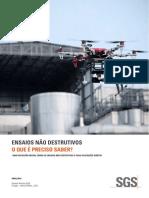 SGS IND Non Destructive Testing PT Brazil