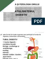 anatomia_omului_aparatul_digestiv_prezentare