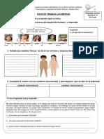 Ficha de trabajo La pubertad.5to