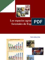 El sector agrario en España